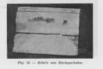 Gilis (1957, figuur 1.16)