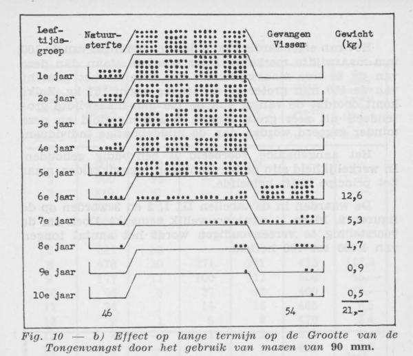 Gilis (1957, figuur 2.10)