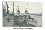 Vandeput (1932, pl. 34)