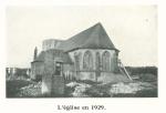 Vandeput (1932, pl. 174)