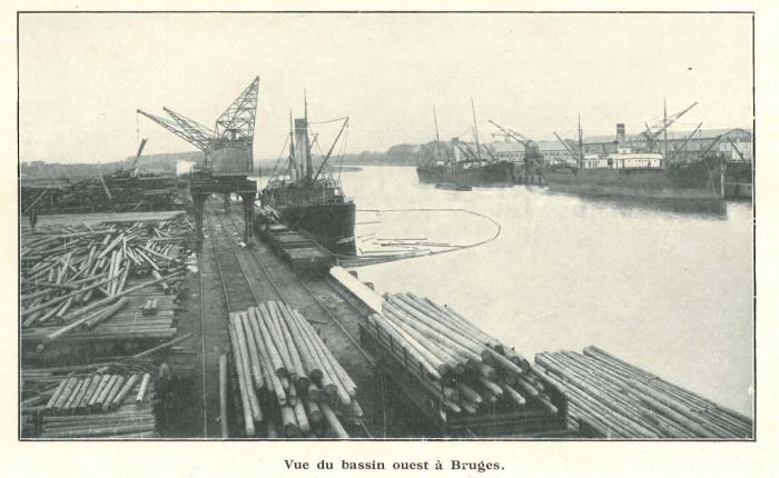 Vandeput (1932, pl. 201)