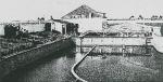 (1947). Het oesterbedrijf te Nieuwpoort Ons Land 29(34): 12-13