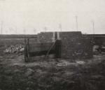 Thys (1922, figuur 110)