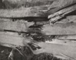 Thys (1922, figuur 112)