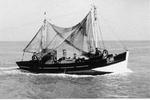 O.46 't Zal Wel Gaan (bouwjaar 1943)
