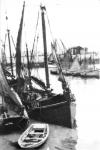 Recreatieve vissersvloot