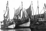 O.206 Renilde  (bouwjaar 1927), de O.46 'tZal Wel Gaan  (bouwjaar 1943) en de O.45 Marie-Jos�  (bouwjaar 1955)