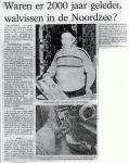 N.470 vist schedelbeen grijze walvis op