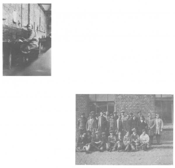 Van Caillie (1985, pl. 106)