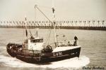 O.491 Barracuda (bouwjaar 1955)