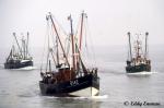 O.184 Flipper  (bouwjaar 1954), de O.142 Hermes  (bouwjaar 1956) en de O.211
