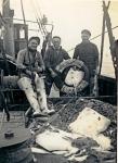 3 vissers met vangst (platvissen)