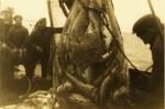 Vissers met vangst in net