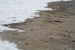 Sneeuw op strand