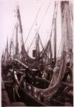 Vissersvaartuigen in schuilhaven Zeebrugge