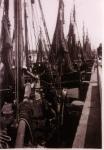 H.7 Charles Elsie (Bouwjaar 1927) en andere garnaalvissers in schuilhaven Zeebrugge