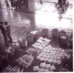 Tarbot en kabeljauw uitgestald op vismijnvloer Zeebrugge