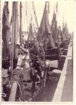 Vissersvaartuigen aan kade Zeebrugge