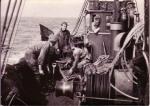 Vangst uitlezen aan boord garnaalkotter Z.475 Annie (Bouwjaar 1943)