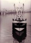 Z.557 Sea Gull (Bouwjaar 1957)