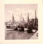 O.125 en andere garnaalvissers in Montgomerydok Oostende
