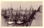 Aanlegsteiger in oude vissershaven Zeebrugge