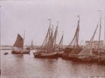 Schuilhaven van Blankenberge of Zeebrugge