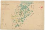 &lt;B&gt;Berlot <i>et al.</i>&lt;/B&gt; (1853). Commune de Lisseweghe. Province de Flandre Occid.le. Arrondissement de Bruges. Canton de Bruges N.° 5. N.° 111. <i>Carte de Belgique. Réduction des plans cadastraux</i>. Dépot de la Guerre: Bruxelles. 1 map p