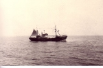 B.604 Ibis (Bouwjaar 1954)