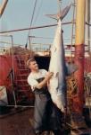 Jan De Voogt met latour (een soort haai)