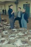 Vangst zeetong in afwachting van verkoop in vismijn Zeebrugge