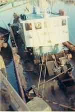 Vis lossen via kaai van vismijn Zeebrugge