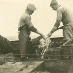 Vissers aan boord van de Z.403 Stern (bouwjaar 1961), author: Onbekend