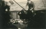 Vis sorteren op de Z.517 (Bouwjaar 1931)