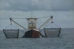 Onbekend schip met netten