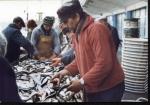 Vis kopen bij de vismijn