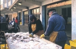Vangst uitgestald voor verkoop