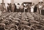 Vis uitgestald voor verkoop