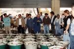 Visverkoop in vismijn