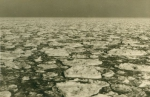 Hard winter 1962/1963