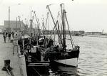 N.146 Georgiana (Bouwjaar 1942), N.807 (Bouwjaar 1943), N.782 en andere schepen in haven, author: Onbekend