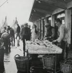 Vis verkopen op de kade