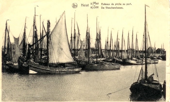Heistse vloot in de vissershaven
