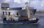 B.601 VAN MAERLANT, verlaat Zeebrugge op weg naar de visgronden.