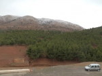 Jurassic Mounds