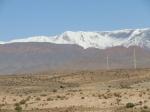 Tillicht mounds toward the west