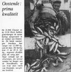 Haring- en sprotvisserij