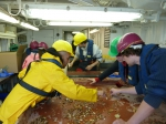Sampling on the Research Vessel Belgica