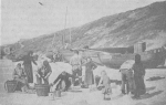 Enkele kleine traditionele vissersvaartuigen op het strand van Mariakerke-Oostende omstreeks 1900
