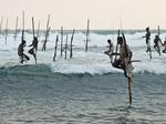 Traditionele visserij in Sri Lanka